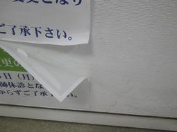1108150902 (2).JPG